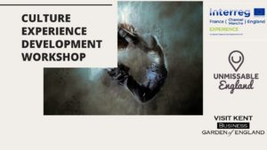 Culture Experience Development Workshop
